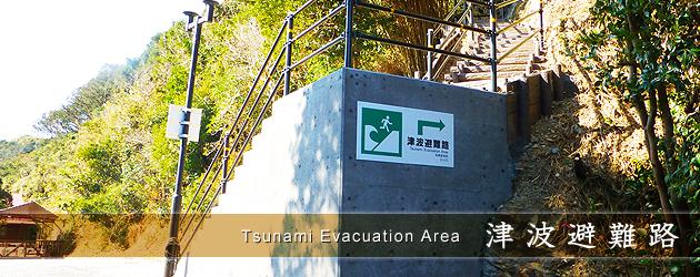 津波避難路 高台