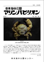 kanko1901.jpg