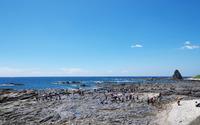 beach_craft_img03.jpg