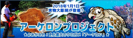 banner_archelon17A.jpg