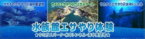 banner_esayari19.jpg
