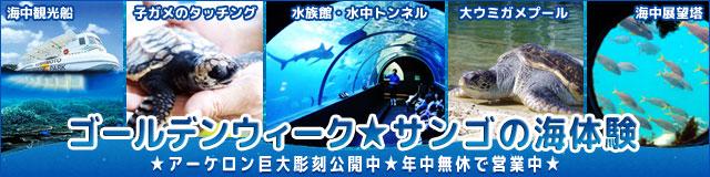 banner_info2019.jpg