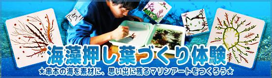 banner_oshiba17.jpg