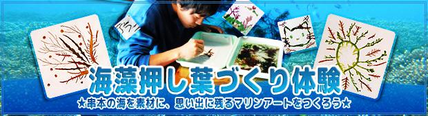 banner_oshiba18.jpg