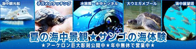 banner_summer2019.jpg