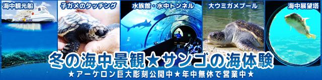 banner_winter181206.jpg